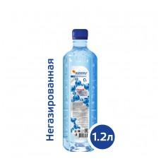 Вода РУСОКСИ / RUSOXY 1,2 литра, ПЭТ, без газа, 6 шт. в упаковке